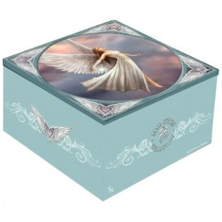 Ascendance Mirror Box