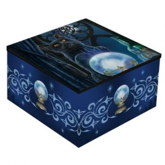 Witches Apprentice Mirror Box