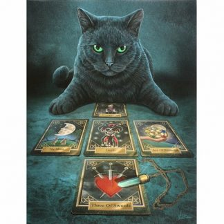 The Black Cat Reader Canvas Picture