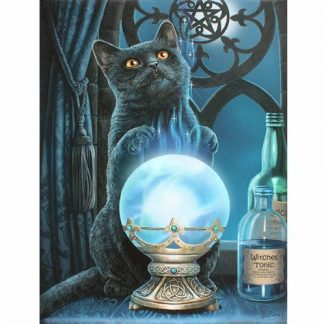 Witches Apprentice Canvas Picture