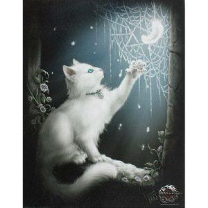 Snow Kitten Canvas Picture