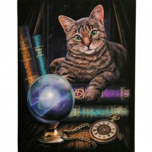 Fortune Teller Canvas Picture