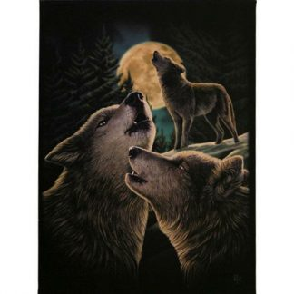 Wolf Song Canvas Picture