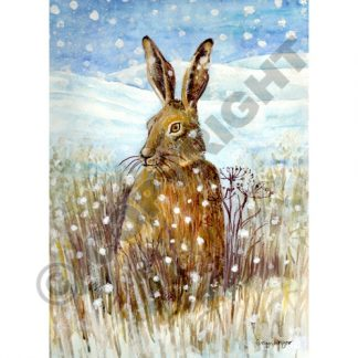 Hare in the Snow Card