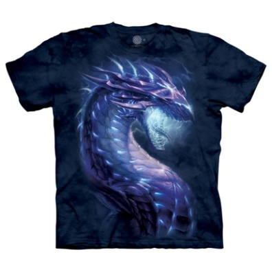 Stormborn Dragon T Shirt