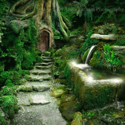 Entrance to Rivendell Card