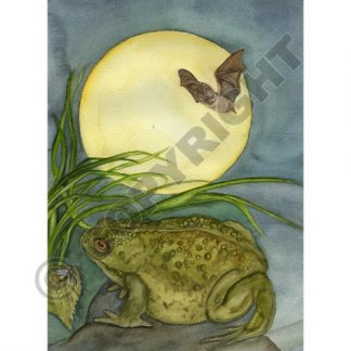 Mabon Moon Toad Card