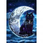 Celtic Black Cat Card
