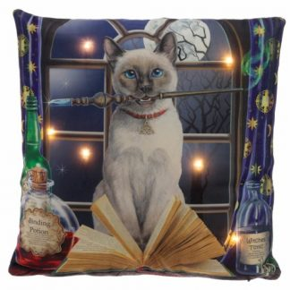 Hocus Pocus Light Up Cushion