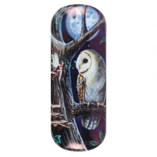 Fairy Tales Glasses Case