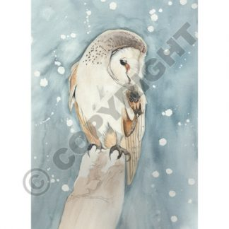 All Souls Owl Card