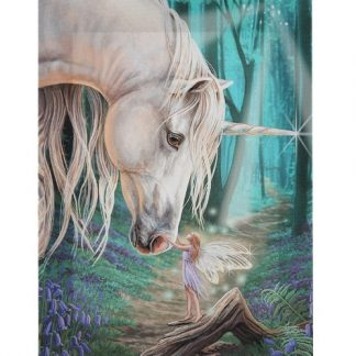 Fairy Whispers Canvas Picture