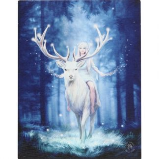 Fantasy Forest Canvas Picture