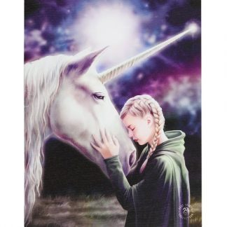 The Wish Canvas Picture